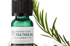 Know more about the Tea Tree Oil Uses and Benefits