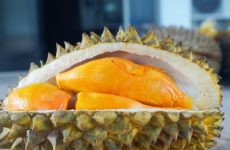 How should you eat the Durian fruit